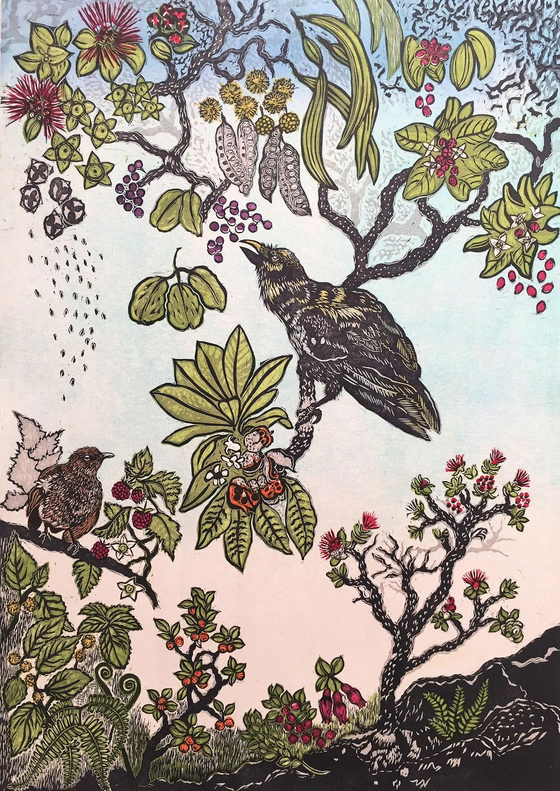 Seeding the Rainforest. Hawaiian 'Alala Crow Print