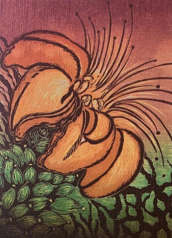 Botanic Greeting Card 5